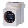 S-Video Keystone Module, (4-pin DIN) to 110 (Package of 20)