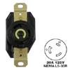 AC Receptacle NEMA L5-30 Female Black 125 Volt 30 Amp