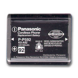 Panasonic Replacement Battery for IBM 4900