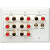 Audio Home Theater Interface Wall Plate