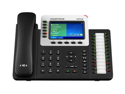 Enterprise IP Telephone