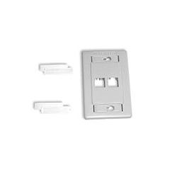 Belden 2-Port Flush Interface Plate
