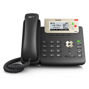 Professional Gigabit IP Phone