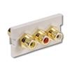 Infin-e-Station Module - 3 RCA Audio/Video Feed-Through Gold F/F