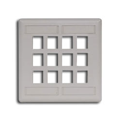 Hubbell IFP Double Gang Wall Plate - 12 Ports