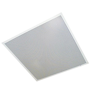 2' x 2' One Way Dual Input Ceiling Speaker