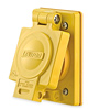 30 Amp Wetguard Flush Mount Locking Receptacle with Cover - Industrial Grade 125/250 Volt (Non-Ground)