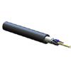 FREEDM Loose Tube, Gel-Free Cable, Riser, 12 Fiber, Single-mode (OS2)