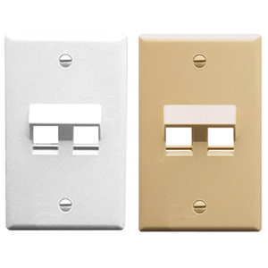 Angled 2-Port 1-Gang Faceplate