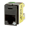 Clarity Cat6a Panel Jack,T568A/B, 8 Pos, 180 Degree